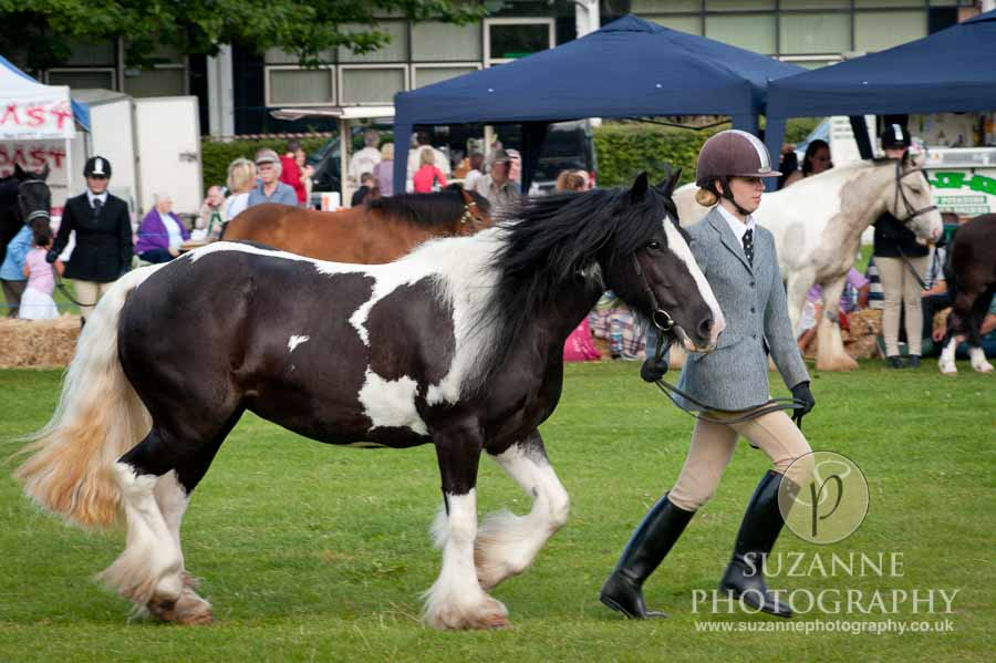 Mirfield Agricultural Show 0013