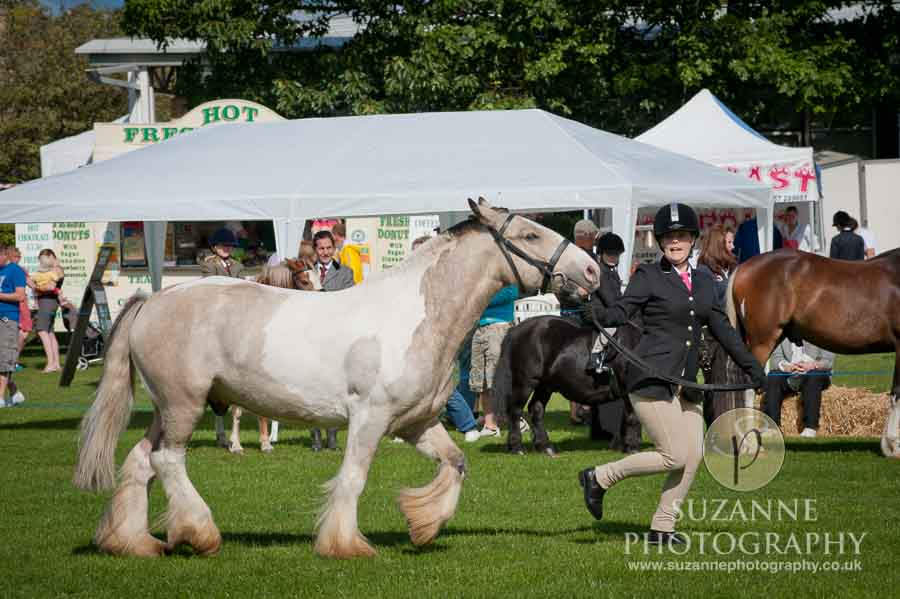 Mirfield Agricultural Show 0017