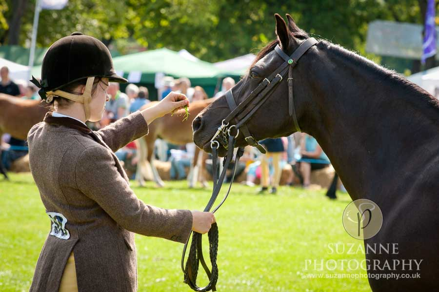 Mirfield Agricultural Show 0023