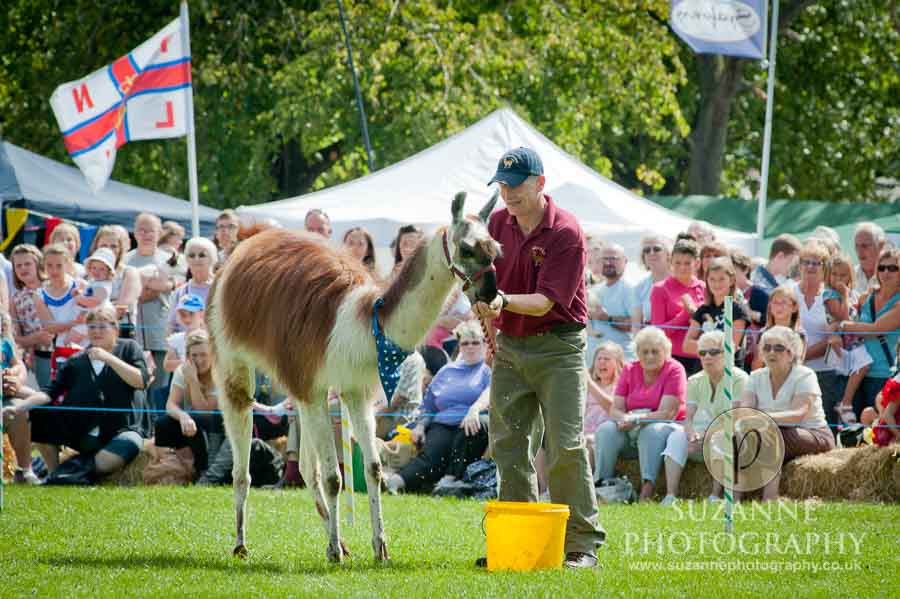 Mirfield Agricultural Show 0050