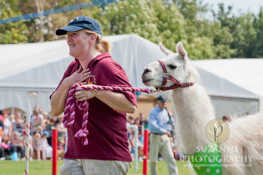 Mirfield Agricultural Show 0053