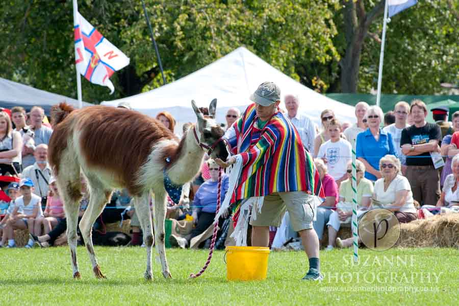 Mirfield Agricultural Show 0055