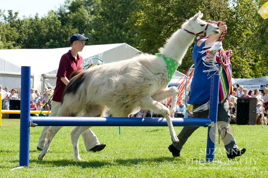 Mirfield Agricultural Show 0056