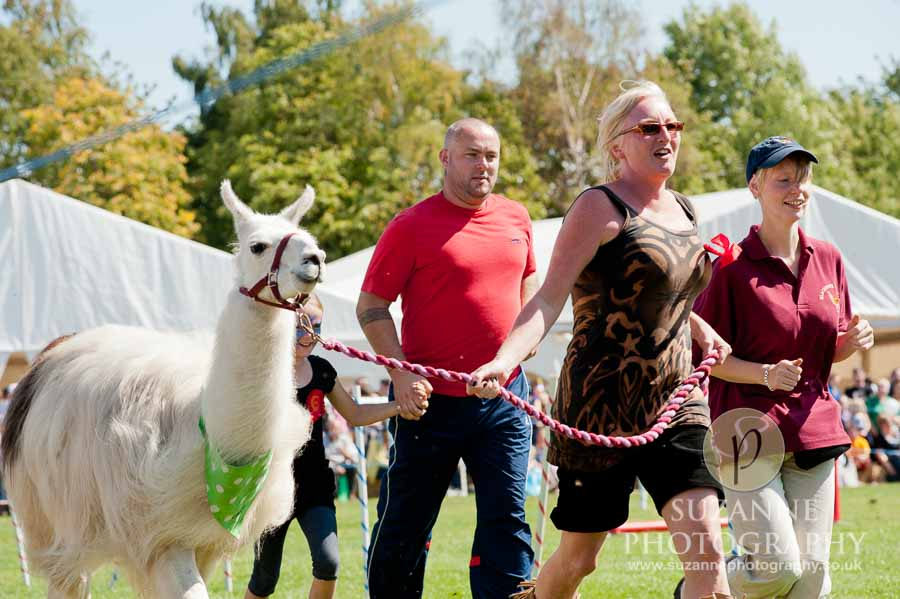 Mirfield Agricultural Show 0057