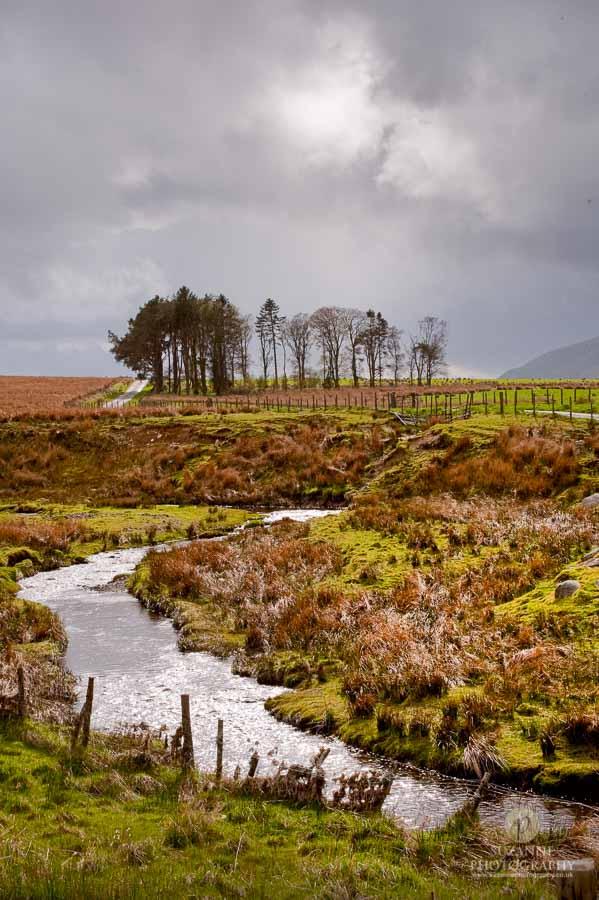 Best-Landscape-157
