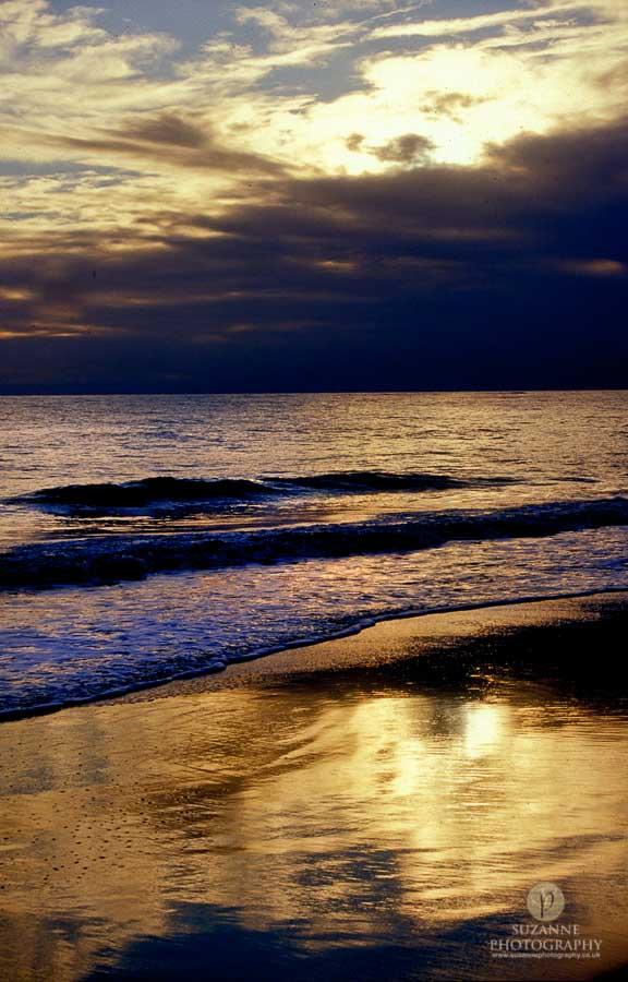 Best-Landscape-172