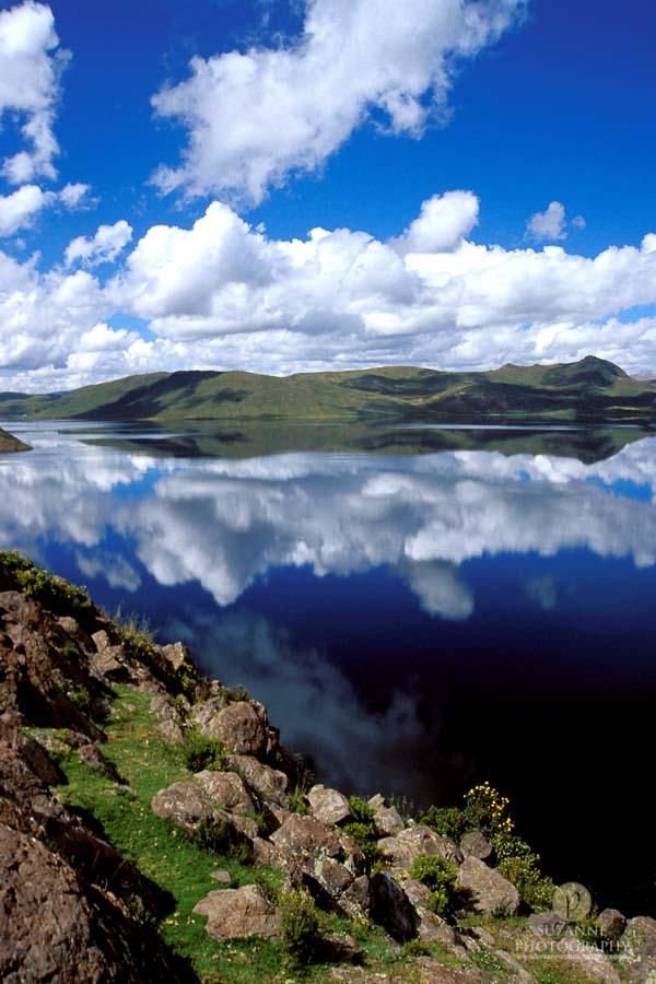 Best-Landscape-174