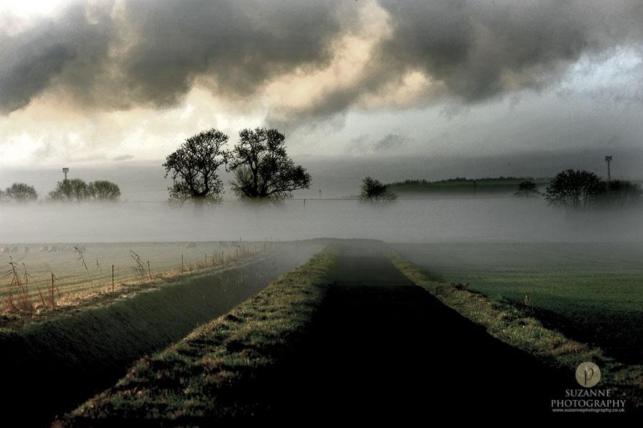 Best-Landscape-176
