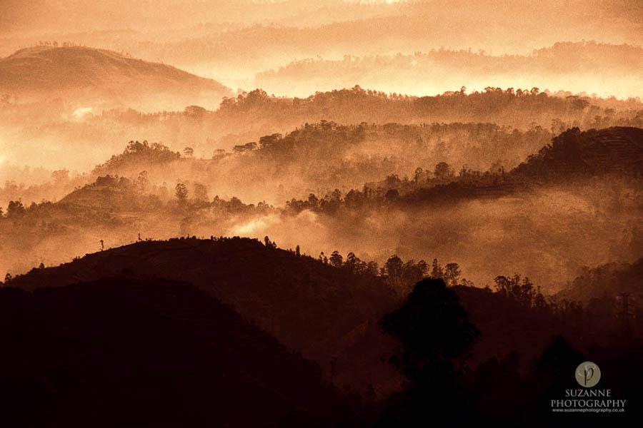 Best-Landscape-180