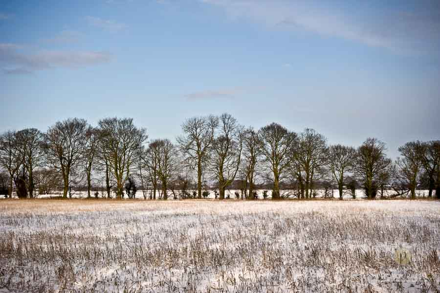 Best-Landscape-Suzanne-Photography-104