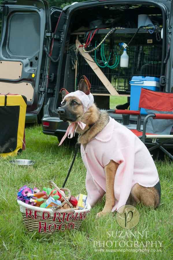 Burton Salmon Dog Show North Lodge 0112