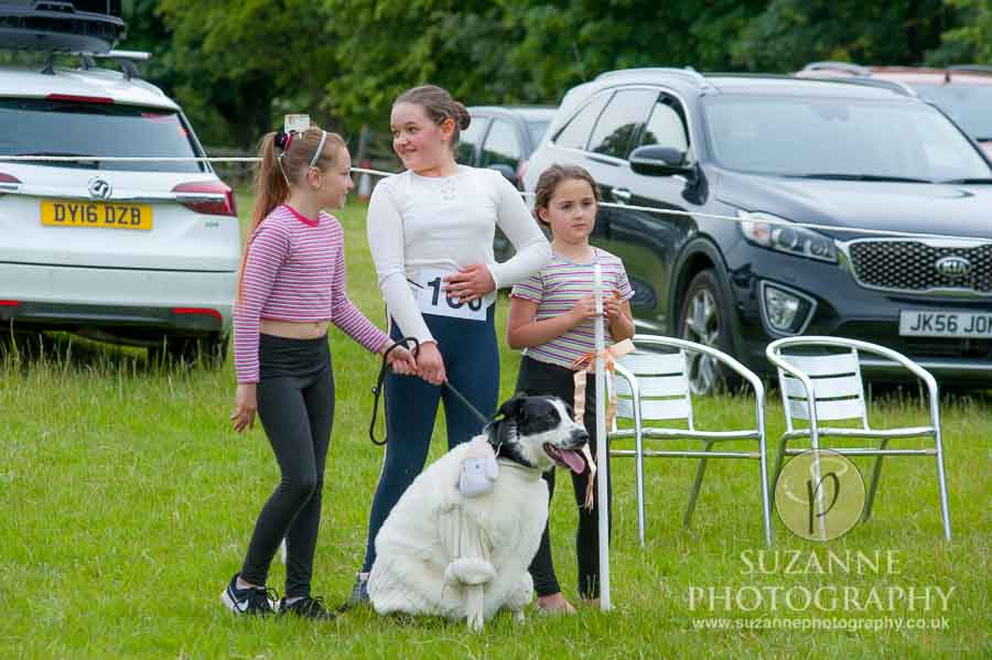 Burton Salmon Dog Show North Lodge 0118