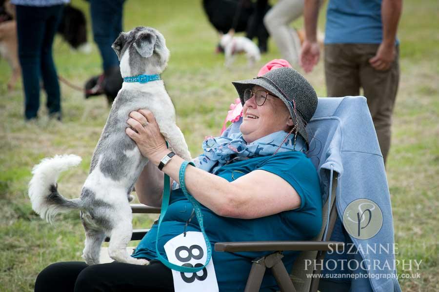 Burton Salmon Dog Show at North Lodge near Knottingley 0007
