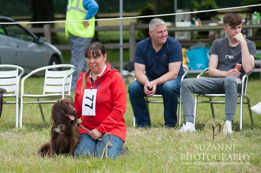 Burton Salmon Dog Show at North Lodge near Knottingley 0012