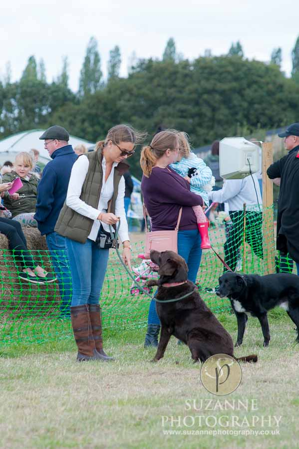 Farmer Copleys Fun Dog Show 0074