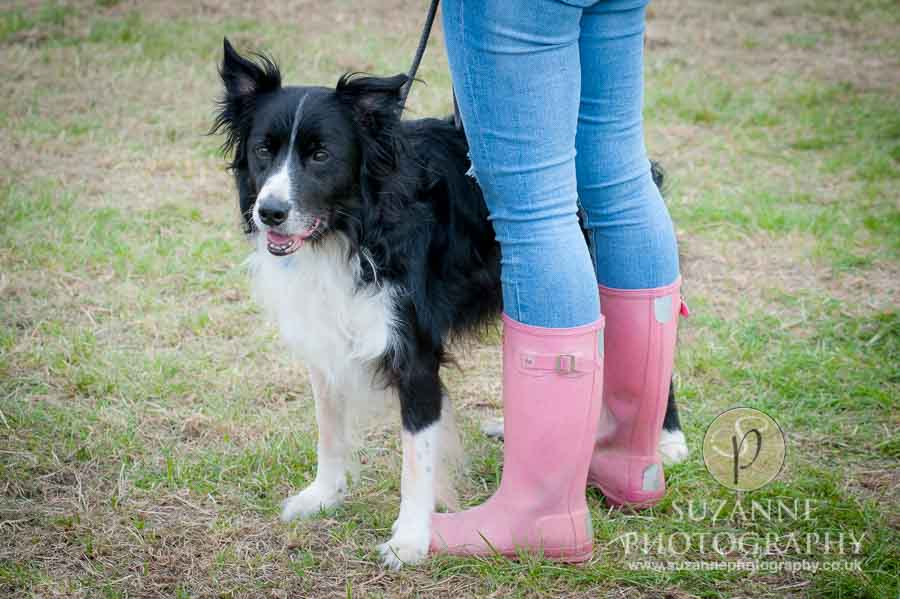 Farmer Copleys Fun Dog Show 0075