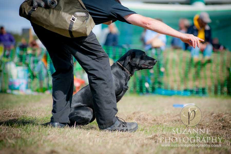 Farmer Copleys Fun Dog Show 0094