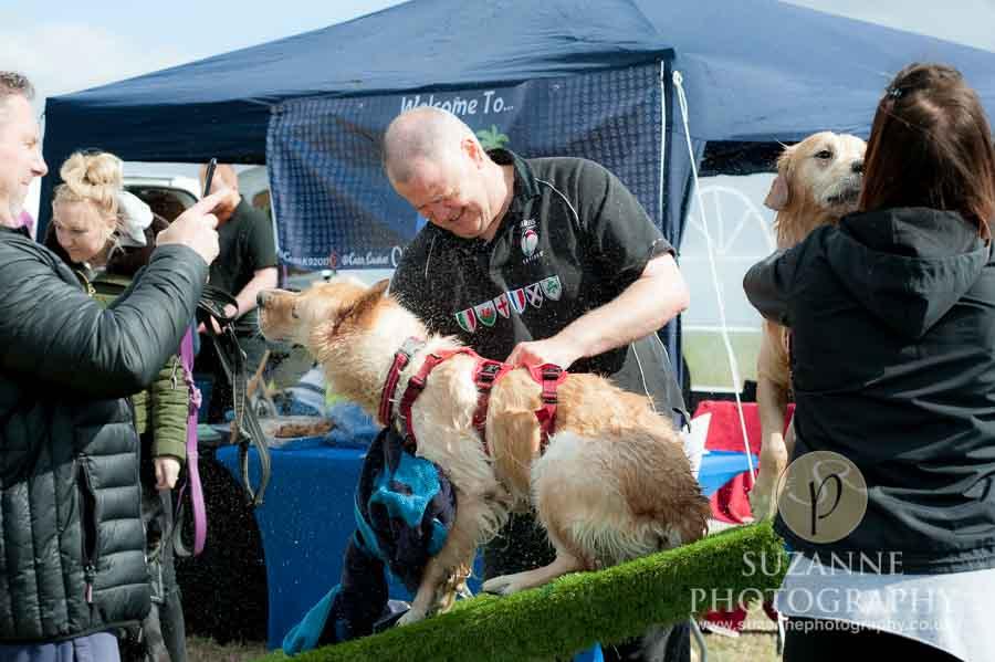 Farmer Copleys Fun Dog Show 0125