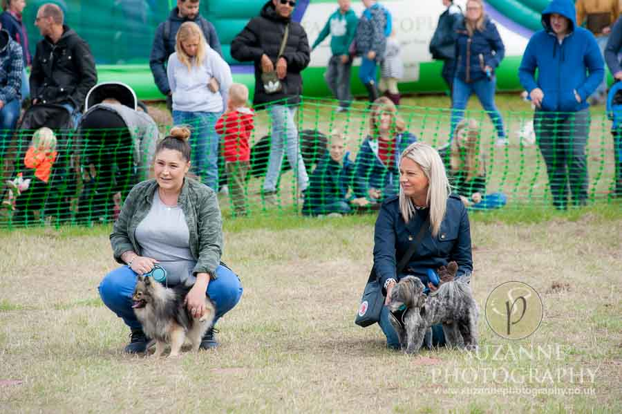 Farmer Copleys Fun Dog Show in Pontefract 0022