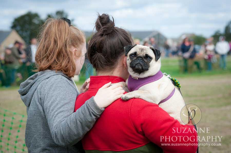 Farmer Copleys Fun Dog Show in Pontefract 0025