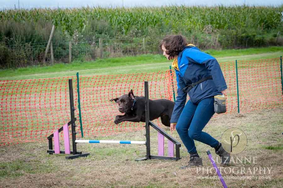Farmer Copleys Fun Dog Show in Pontefract 0031