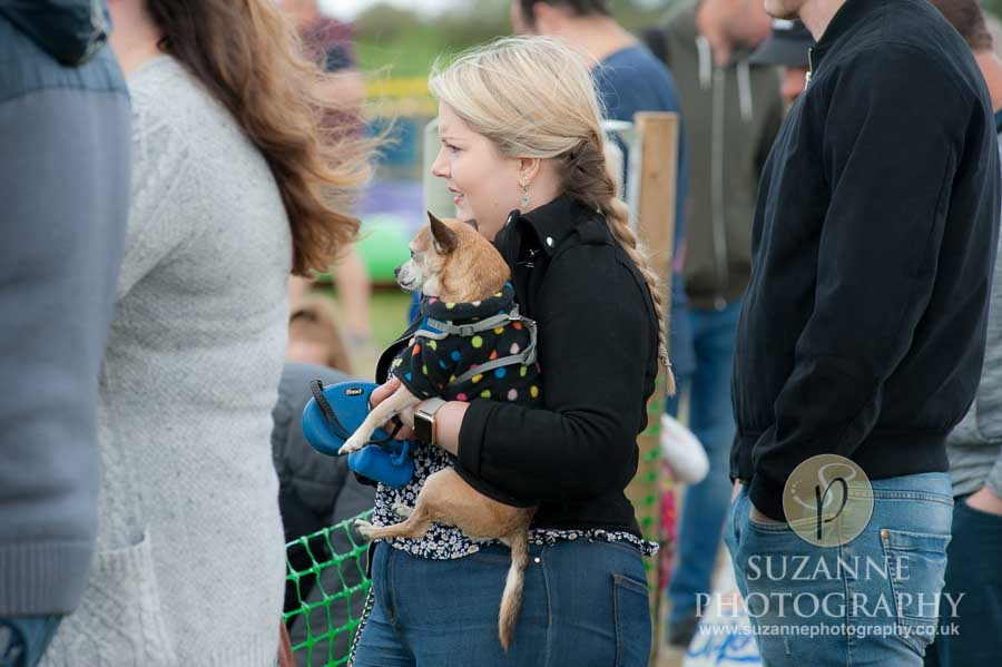 Farmer Copleys Fun Dog Show in Pontefract 0053