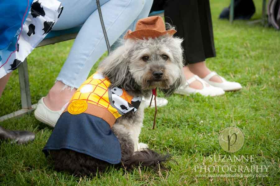 Golden Paws Ranch Fun Dog Show York 0117