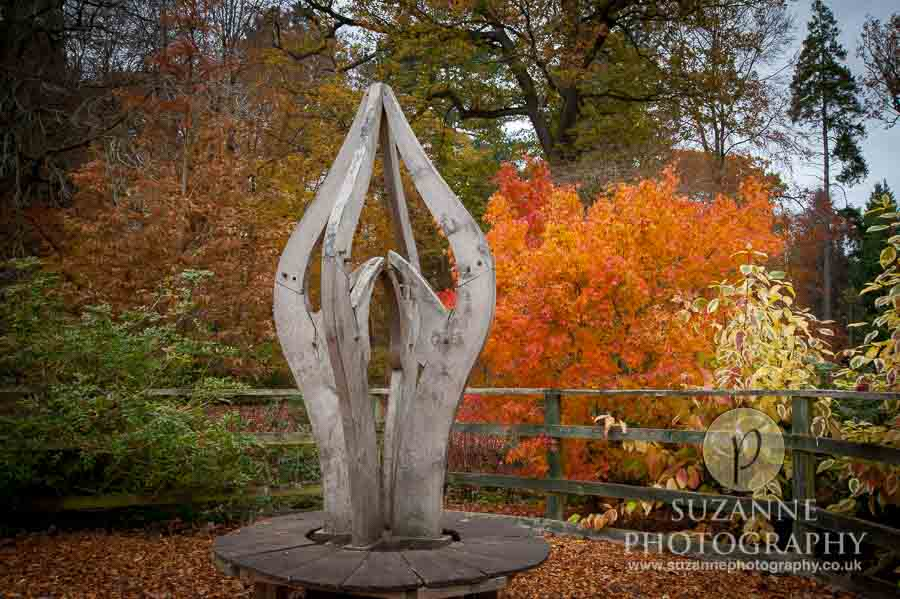 Thorp-Perrow-Arboretum-and-Gardens-at-Bedale-0017