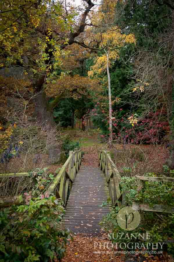 Thorp-Perrow-Arboretum-and-Gardens-at-Bedale-0019