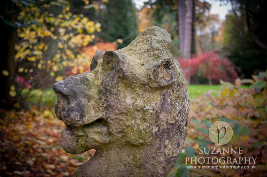 Thorp-Perrow-Arboretum-and-Gardens-at-Bedale-0027