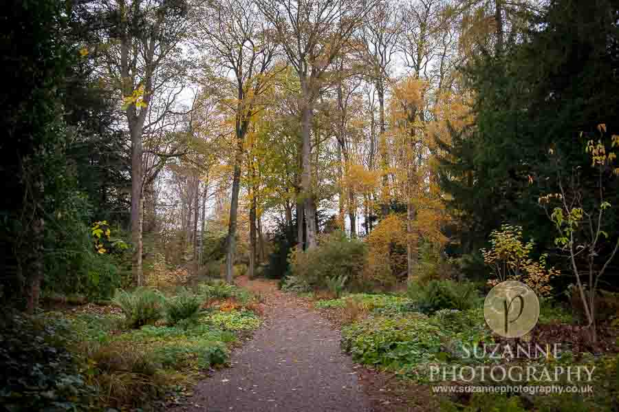 Thorp-Perrow-Arboretum-and-Gardens-at-Bedale-0029