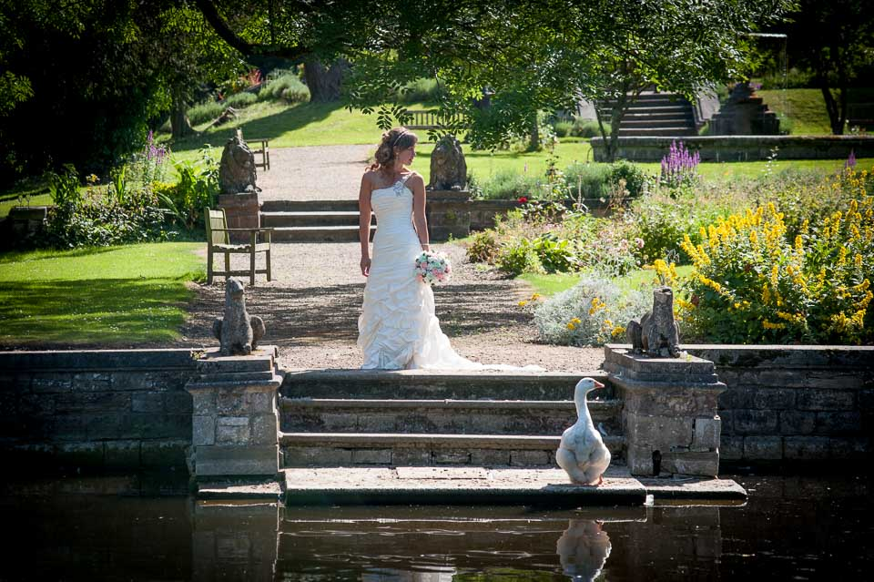 Wedding Gallery for Suzanne Photography 106